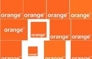 """""""Здрав портокал"""" срещу """"гнила ябълка"""" за БТК?"""