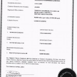 Георгиус Георгиу управлява фирма притежавана от ПИБ